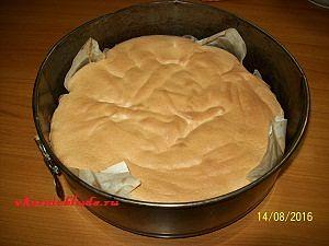 бисквит для торта с муссом