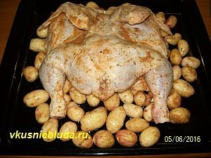 курица и молодая картошка