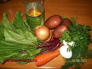 ботва свёклы овощи