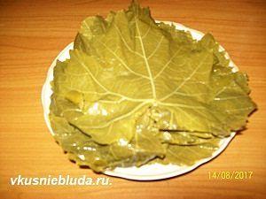 виноградные листья консервированные