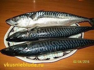 мороженная рыба скумбрия